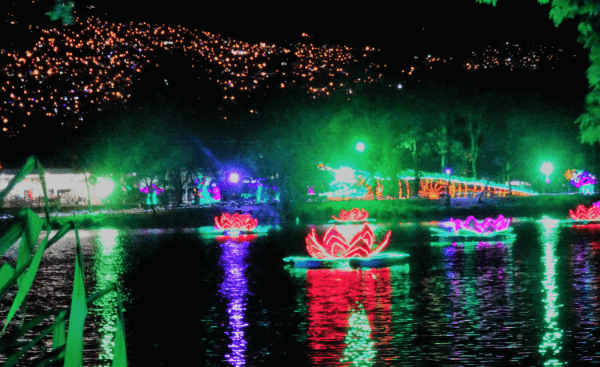 Multi-colored lights in the water during the holiday light show in Medellin