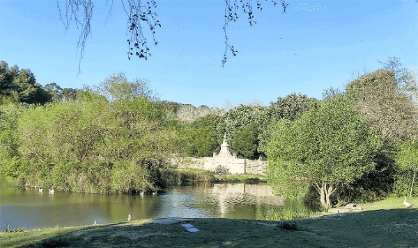 A pond surrounded by trees in the largest urban park in Portugal